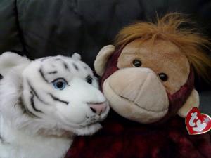 Din lumea copiilor tigrul si maimuta